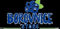 Borovnice.rs  – Blueberies Serbia – Borovnice Srbija